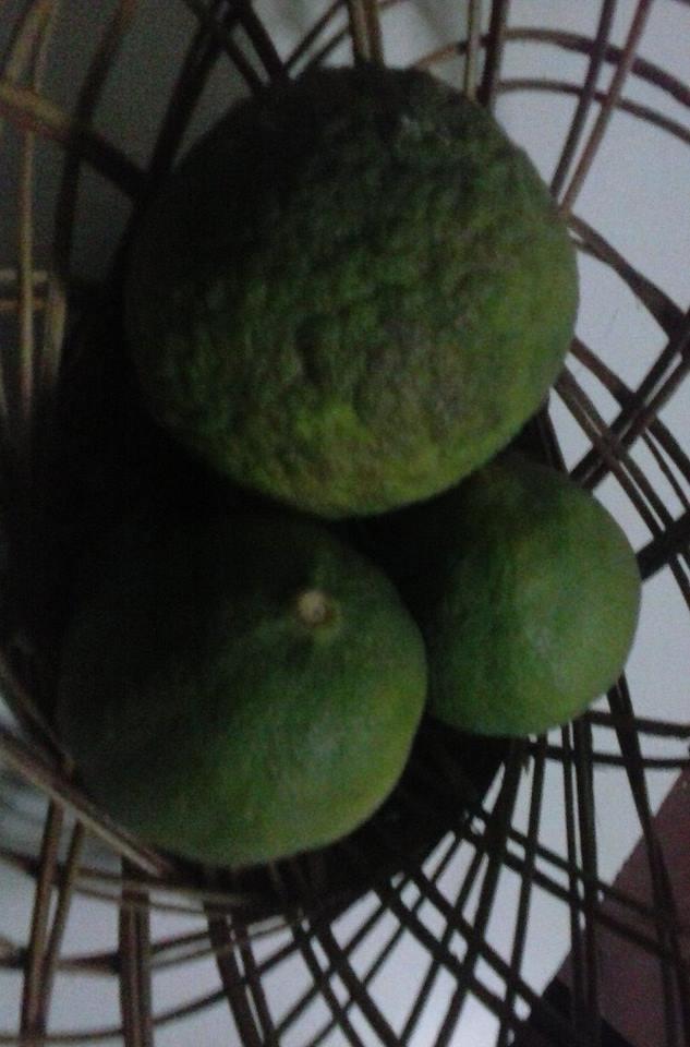 limones2