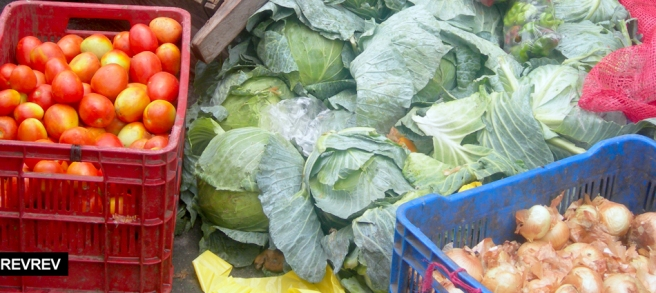 09-esteli-verduras
