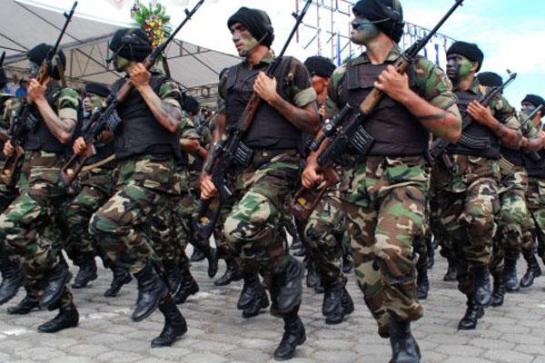 Ejército: no alarmarse por técnicamilitar