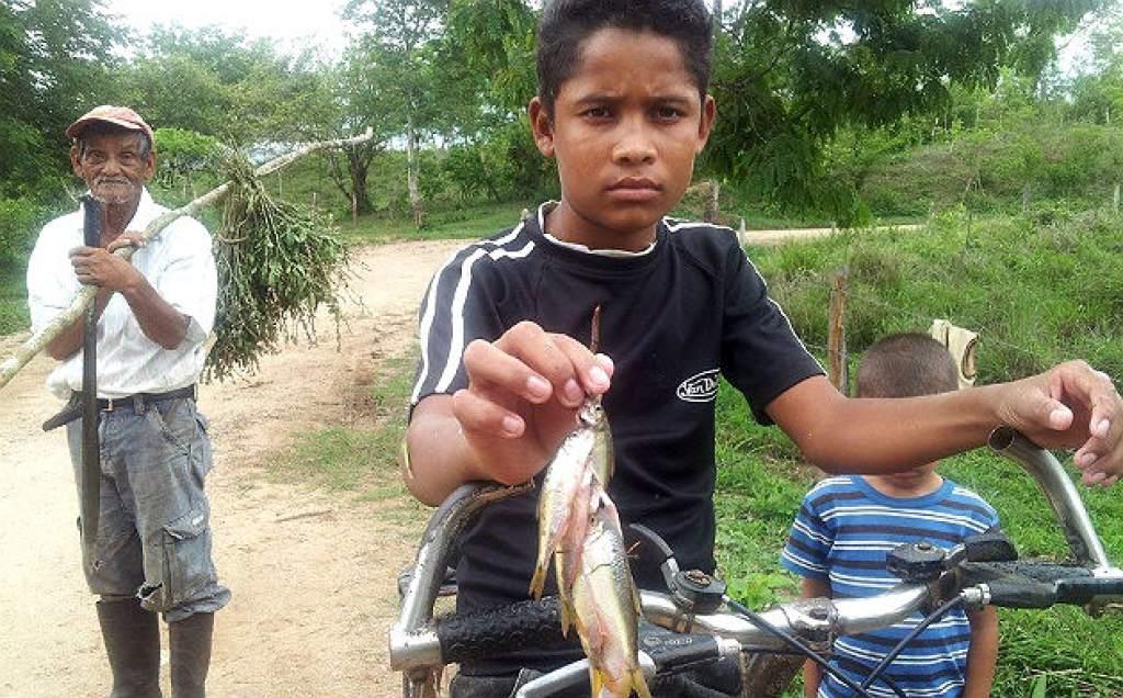 Honduras: Llueven peces por terceravez
