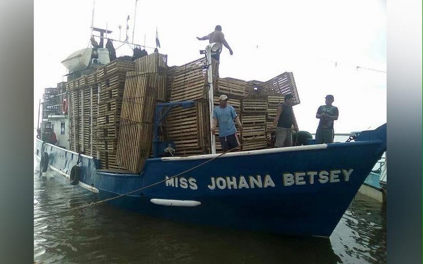 """""""Miss Johana Betsey"""" continuadesaparecido"""
