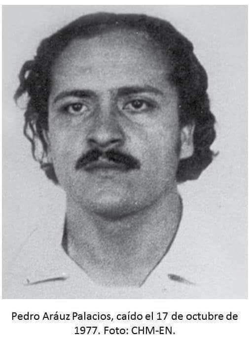 ¿Quién era Pedro ArauzPalacios?